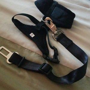 YAP dog seatbelt and a harness